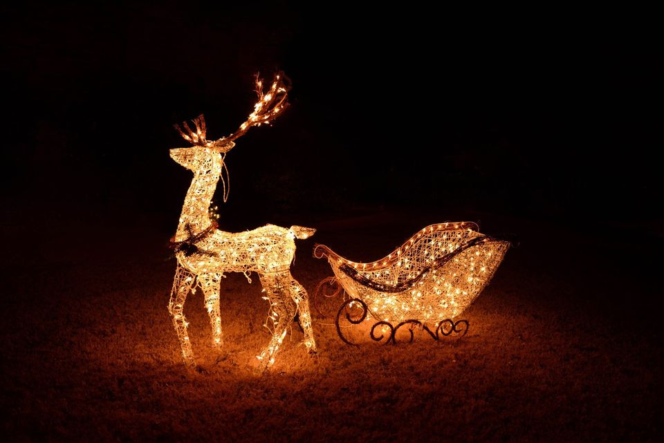 25 outdoor christmas decoration ideas in pictures reindeer pulling sleigh both lighted as a christmas display aloadofball Gallery