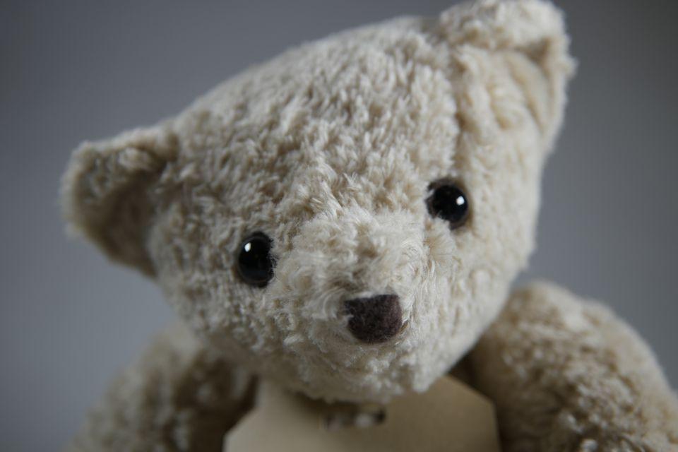 Organic Teddy Bear