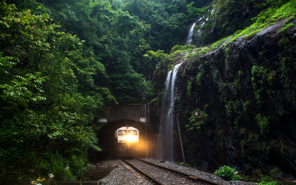 The evergreen western ghats between Goa and Mumbai.