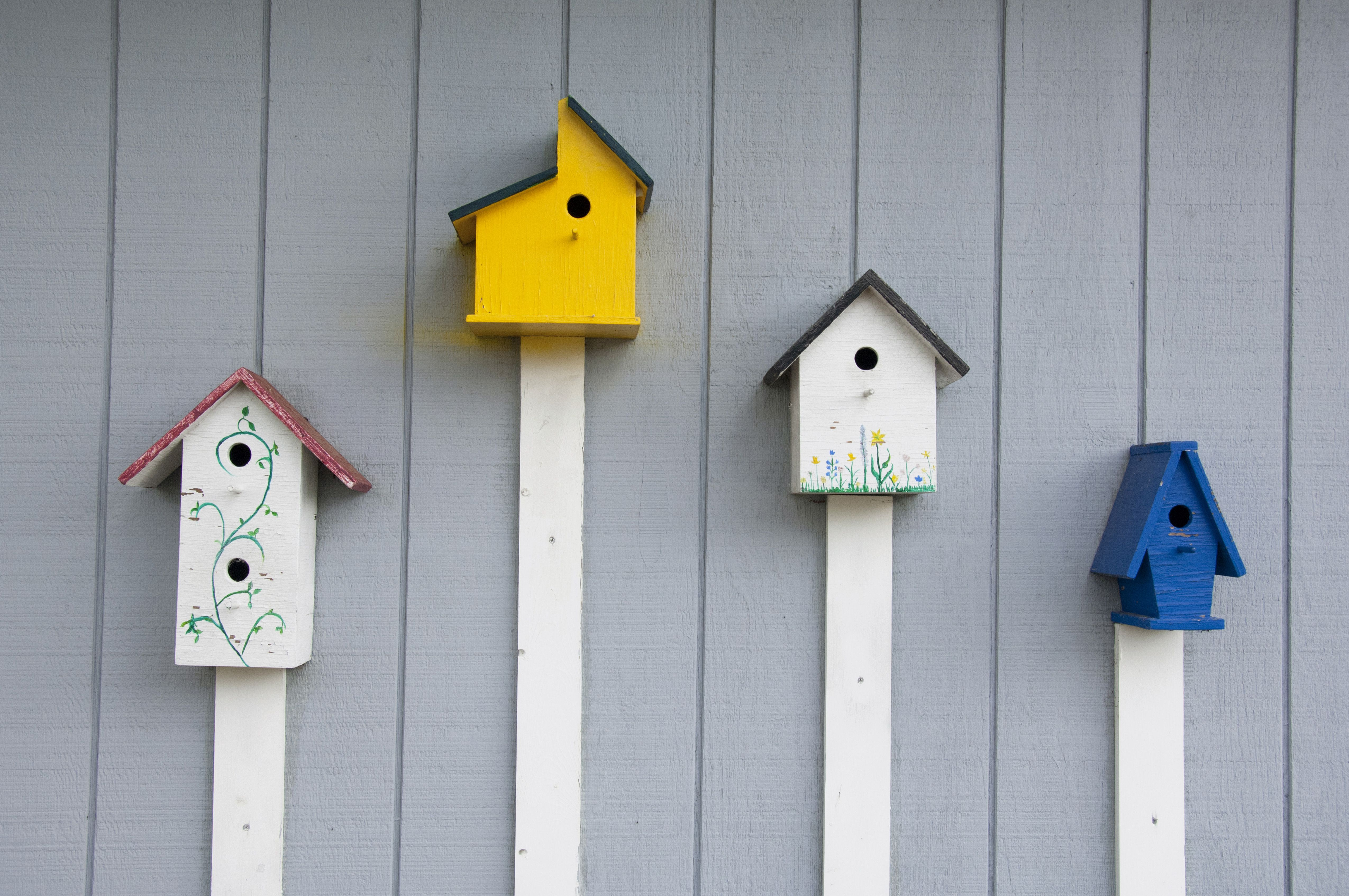 23 free birdhouse plans you can build right now for How do i build a birdhouse