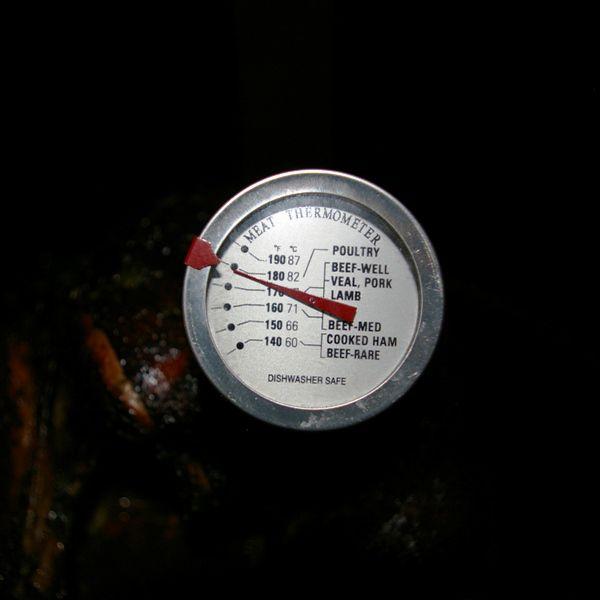 Checking Temperature - Smoking Turkey