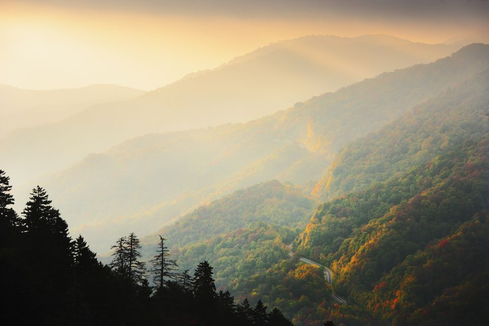 Mist, fall colours and Newfound Gap Road