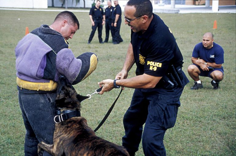 Police demonstrates canine (K9) Narcotics