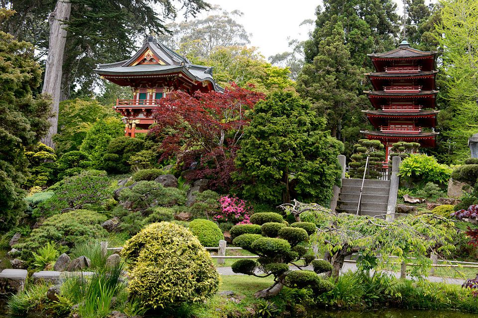 Golden gate park discover what it has to offer for Japanese tea garden hours