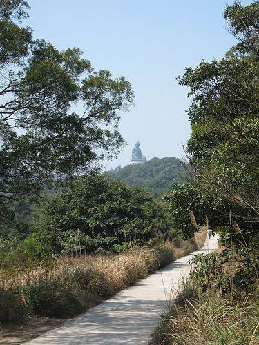 See Lantau Island with a transit tour