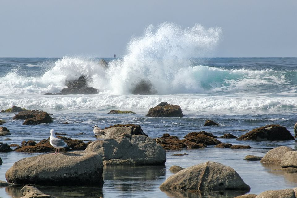 Crashing Waves in Pacific Grove