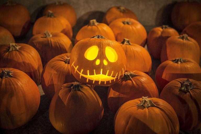 Carving Halloween pumpkins is one of many Halloween traditions millions of Americans will engage in this year. Do you know the top Halloween trends of 2016?