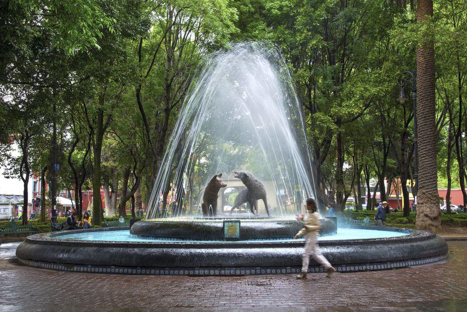 Mexico, Mexico City, Coyoacan, Place of Coyotes, Plaza del Centenario, Jardin del Centenario, Coyote Bronze Water Fountain Sculpture