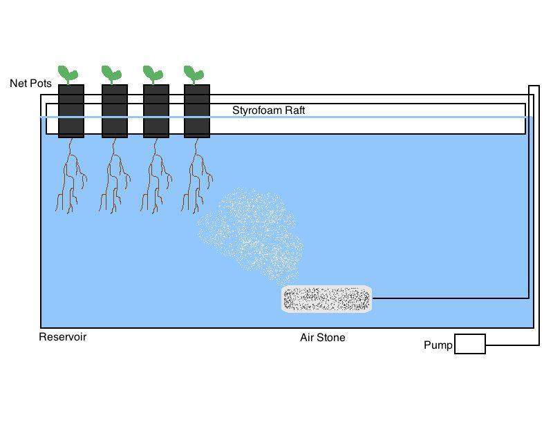 Illustration of a Lettuce Raft System