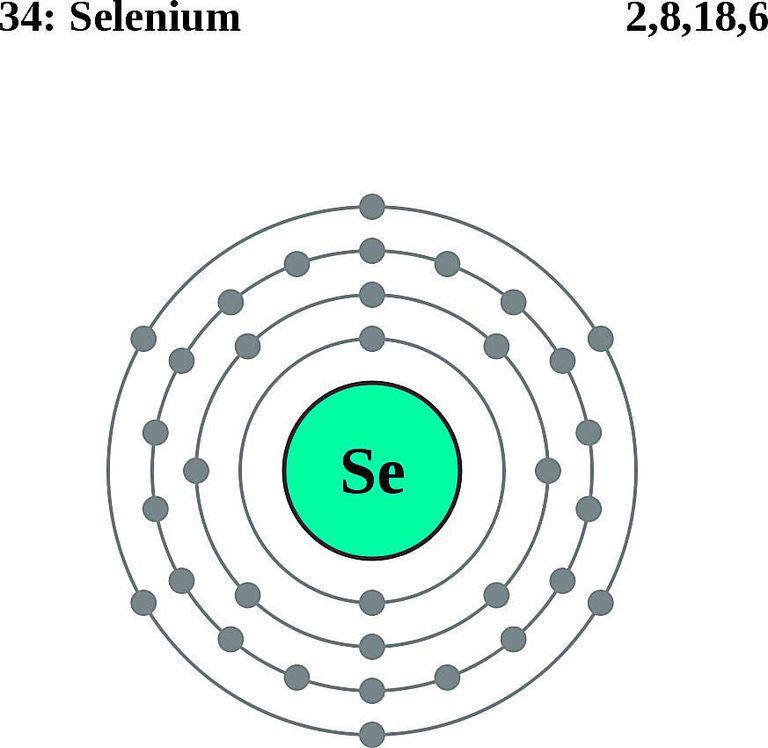 Atoms diagrams electron configurations of elements selenium atom electron shell diagram ccuart Gallery