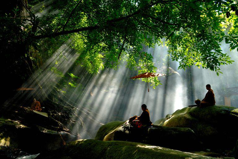 Buddhist monks meditate