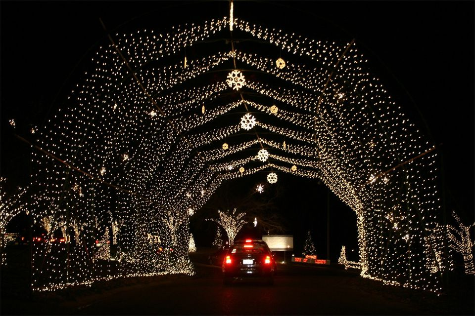 Way of Lights Christmas Display