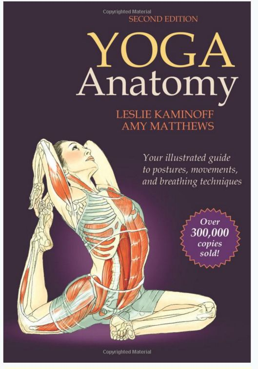 Review - Yoga Anatomy by Leslie Kaminoff and Amy Matthews