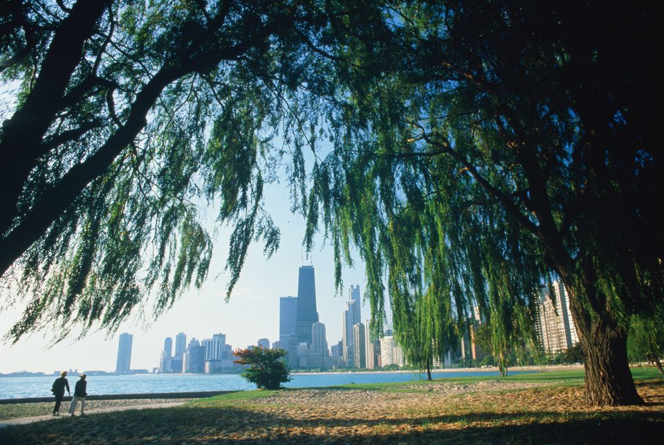 USA, Illinois, Chicago, Lincoln Park, city skyline in distance