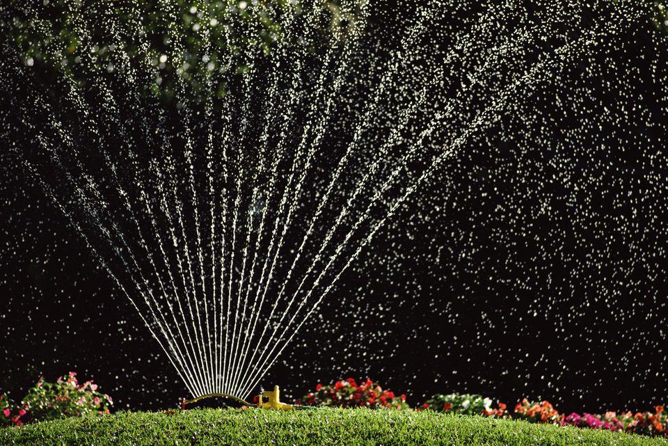 sprinkler on lawn