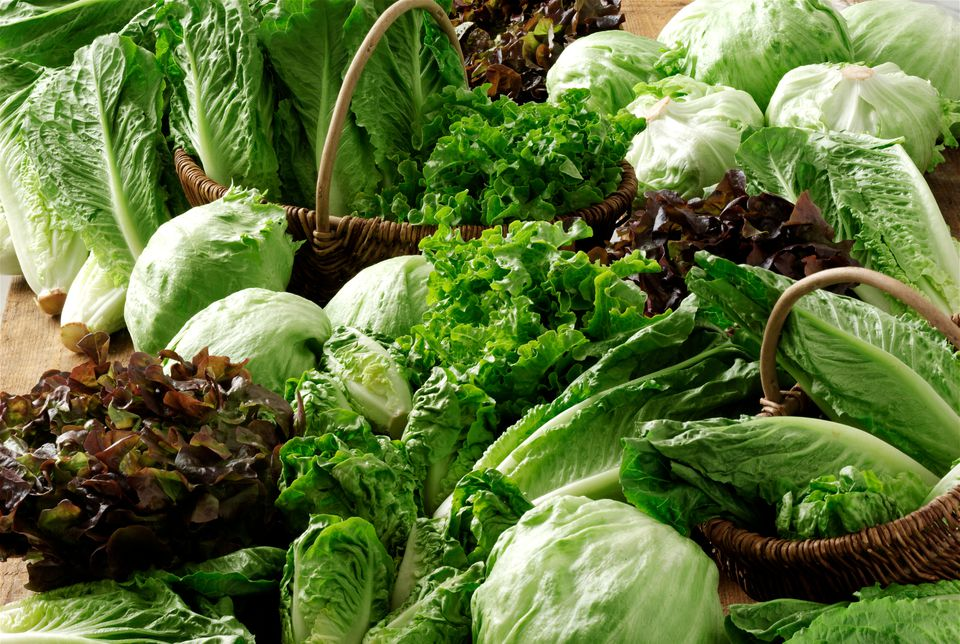 Various types of lettuce: A salad should feature two or at the most three