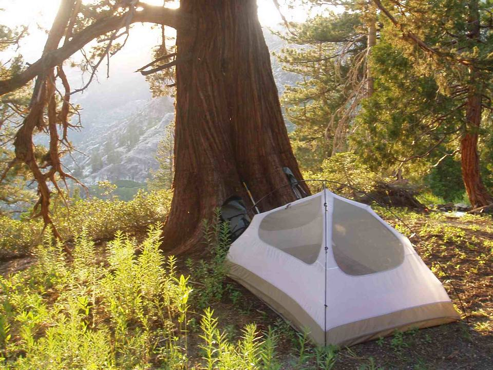 camping in national forest