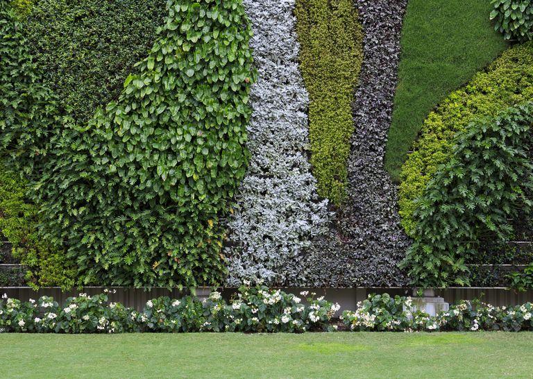 Jardines verticales para tu casa o negocio for Jardin vertical mercadolibre