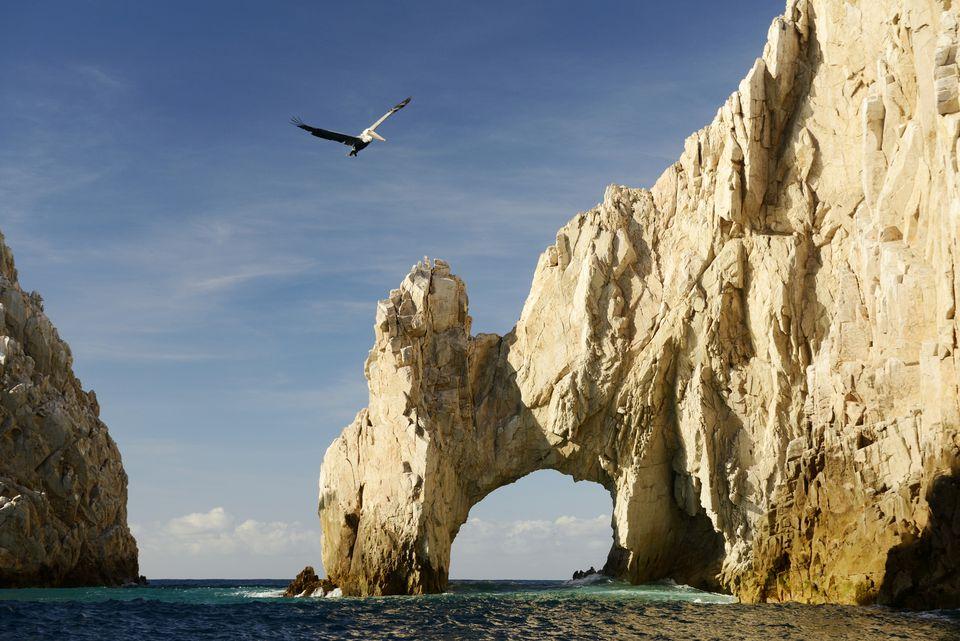 Baja California Sur Mexico