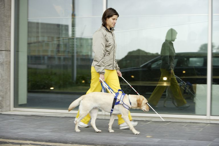 Blind woman and seeing eye dog