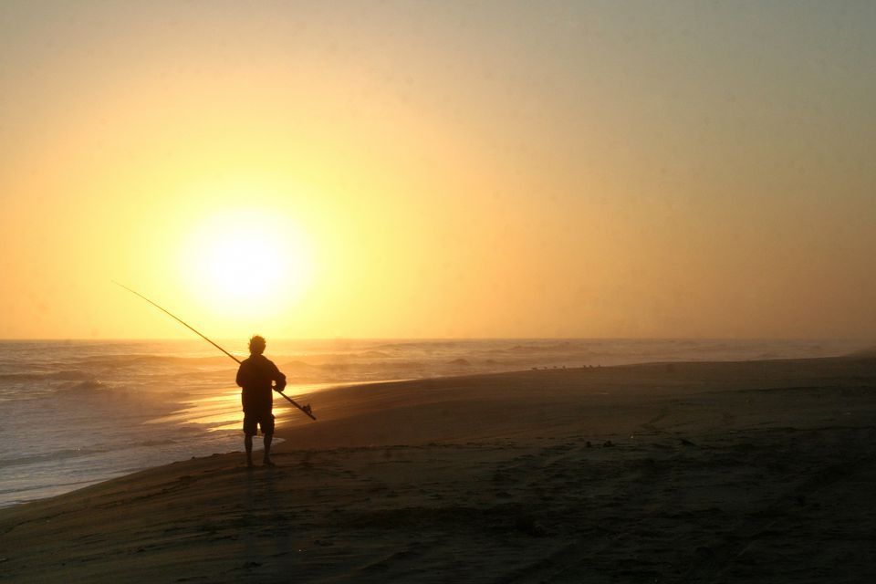Top Things to See on Namibia's Skeleton Coast