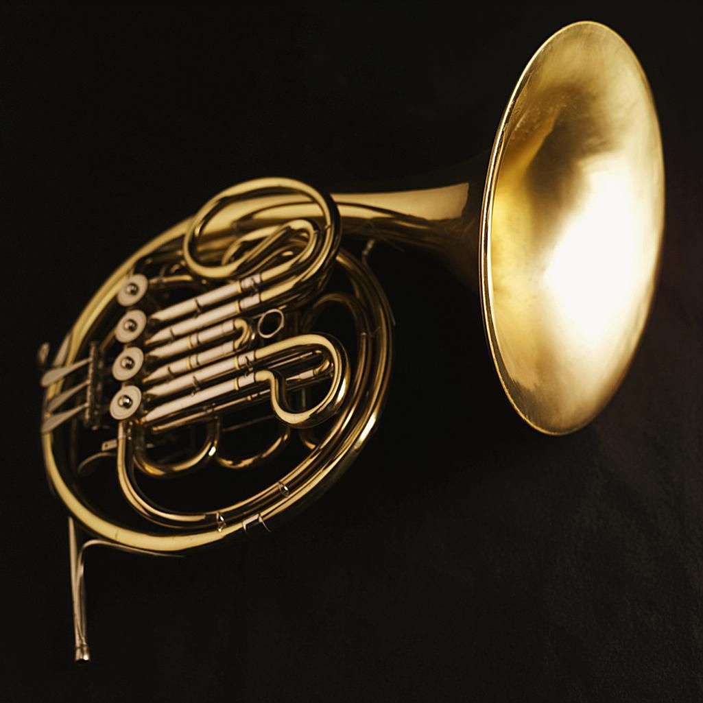 a history of the french horn Harp historical oboes (early music) french horn music education – voice  and instruments (igp) jazz chamber music for woodwinds chamber music.