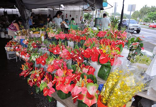 Anthuriums for sale at the Hilo Farmers Market in Hilo on the Big Island of Hawaii
