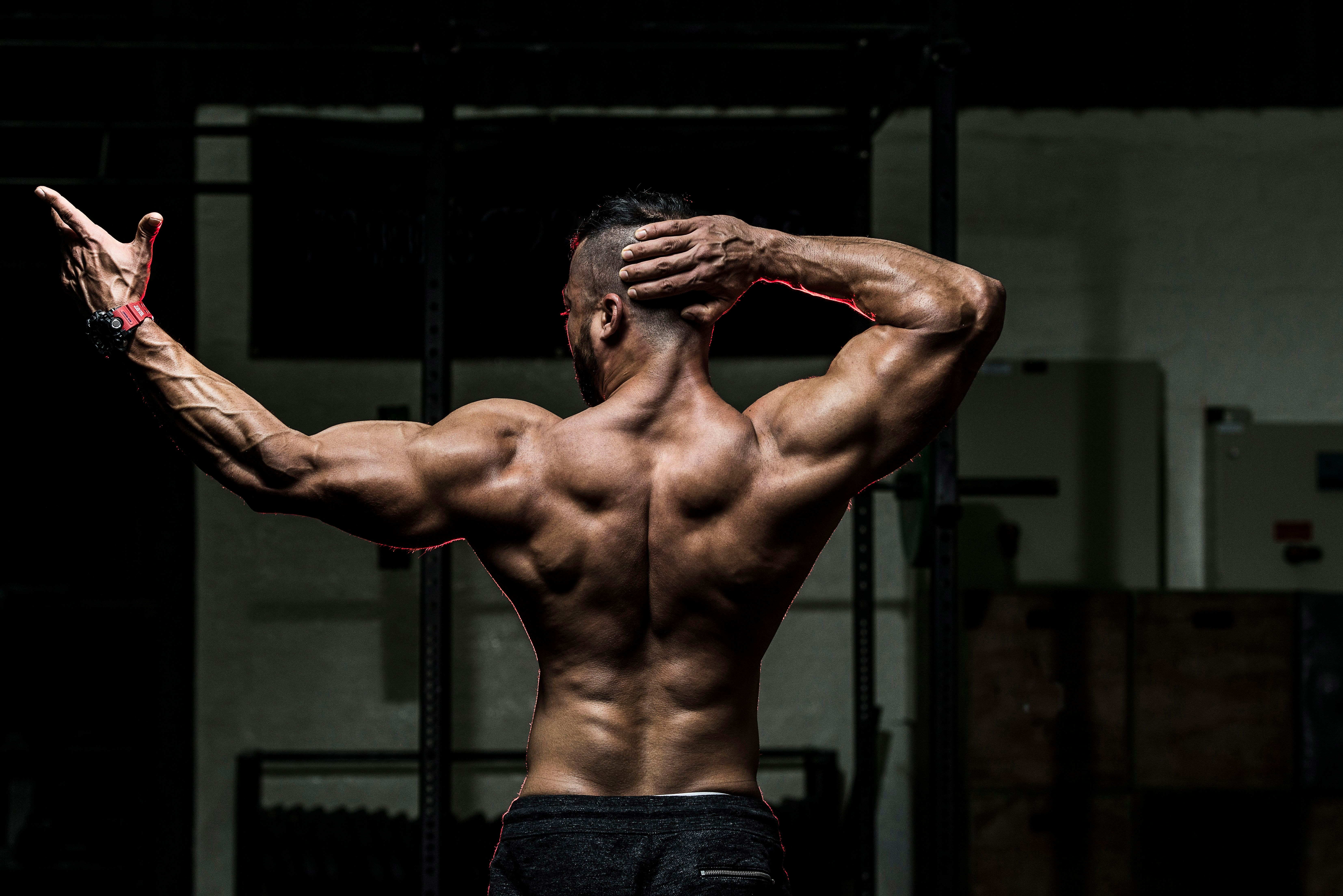 The Importance of Nutrition for Muscle Growth