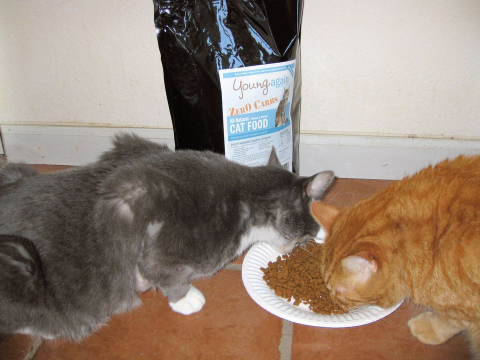 Young Again Zero Carb Cat Food