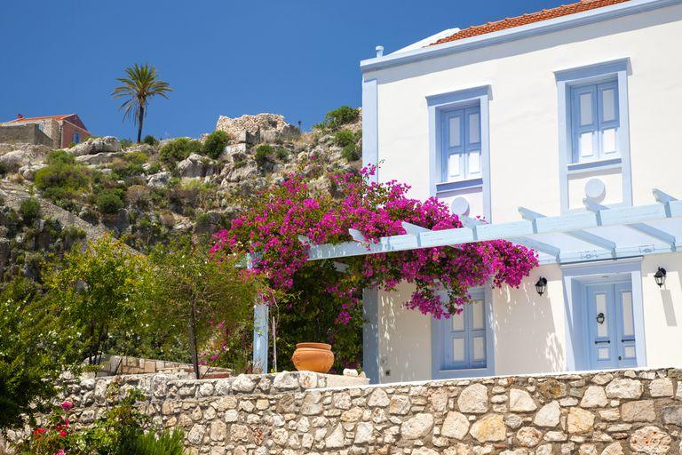 Crea un jard n mediterr neo - El jardin mediterraneo ...