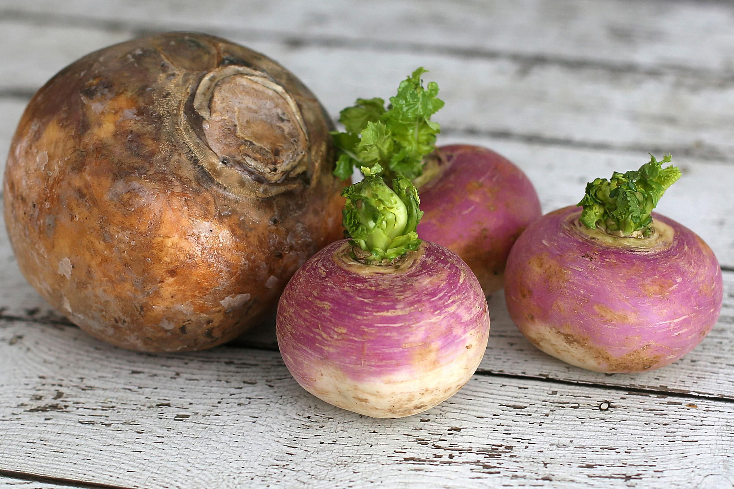Turnip Recipes Food And Wine