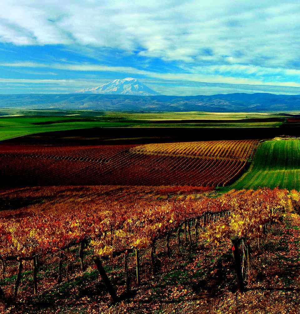 Photo of View of Yakima Valley