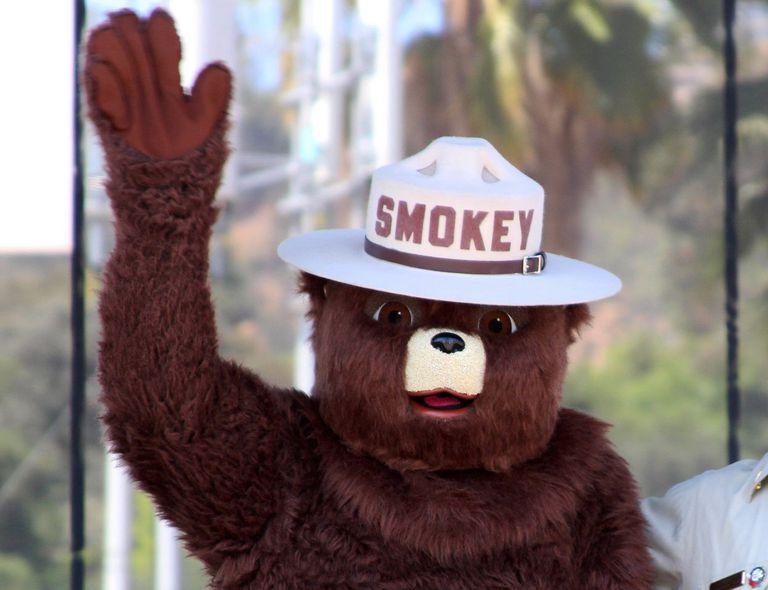 A photo of Smokey Bear