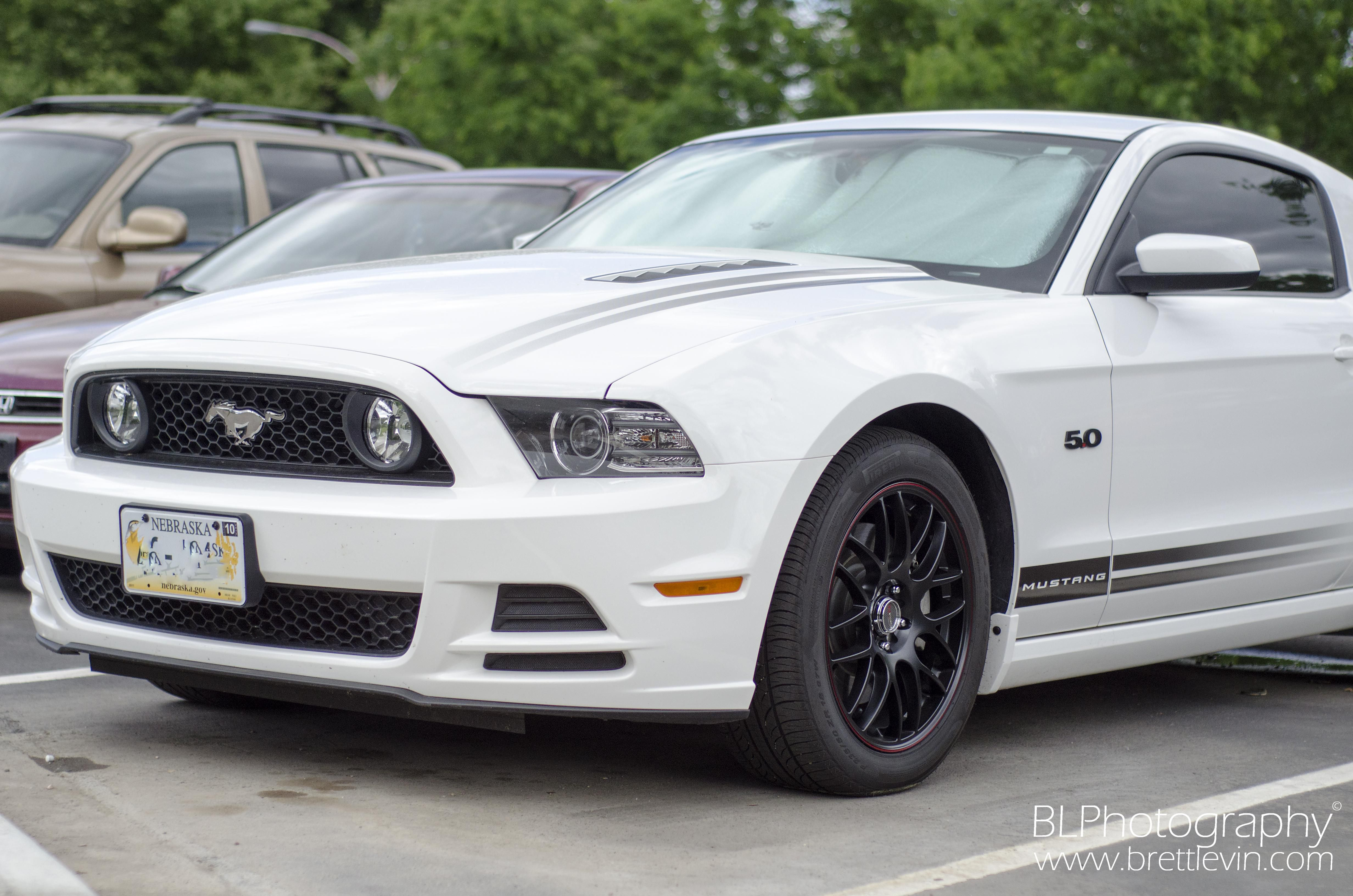 A Look at the 2013 Ford Mustang