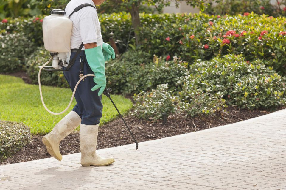 Pest control technician using portable spray rig