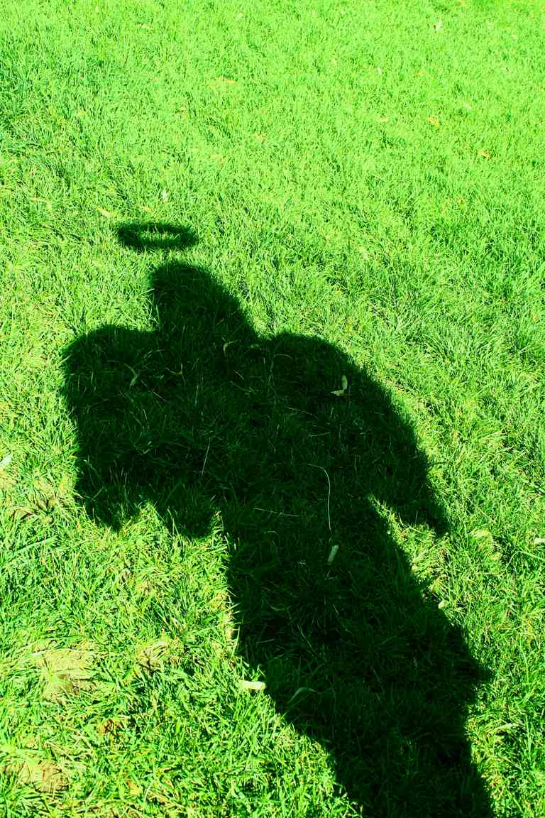 angel shadow on grass ground