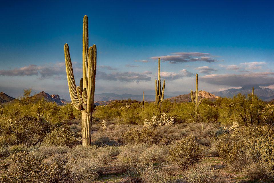 Sunset at the Superstition Mountains, Arizona.