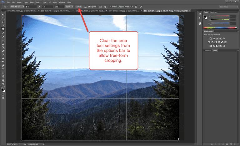 Photoshop Crop Options