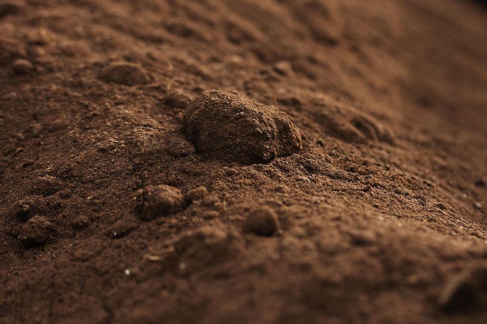 Screened top-soil