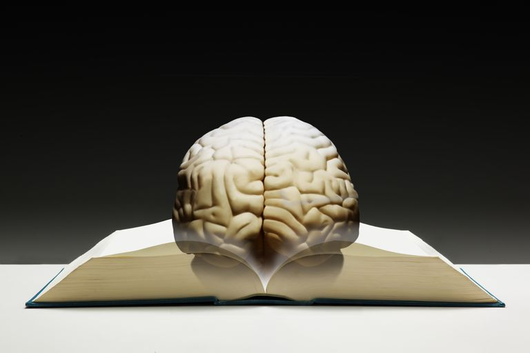 Brain resting on a book