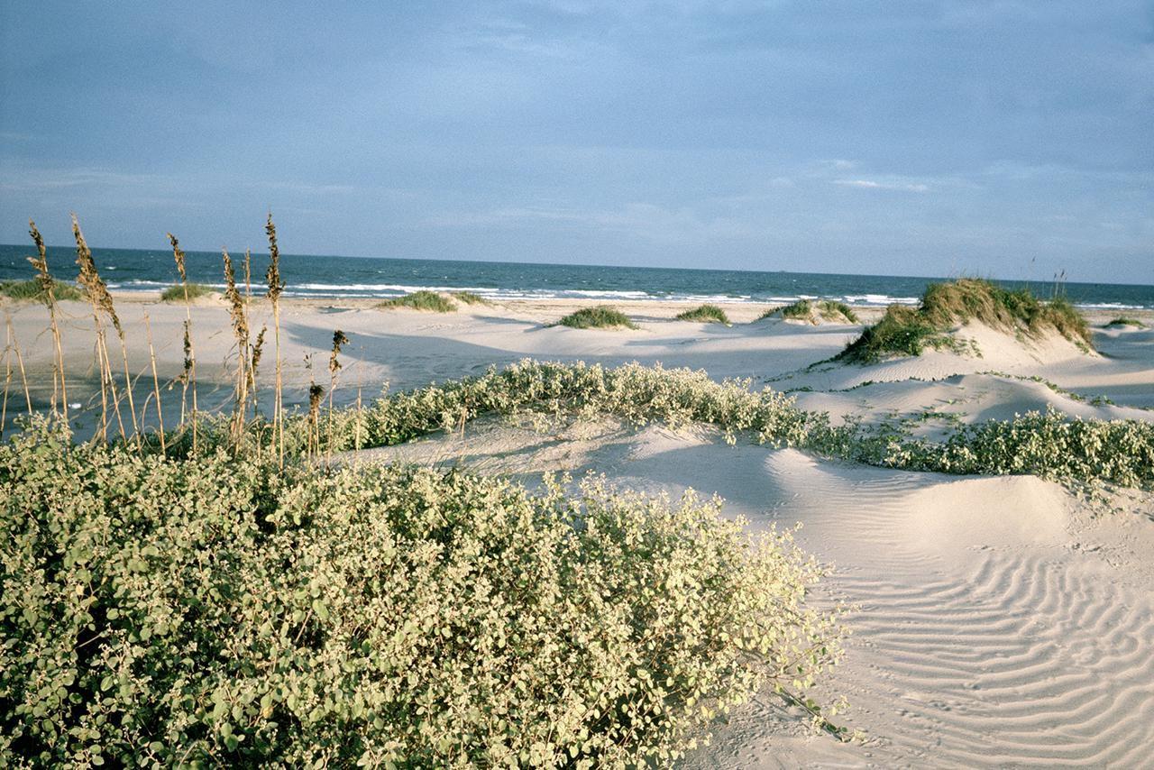 Coastal Vacation Destinations In Texas
