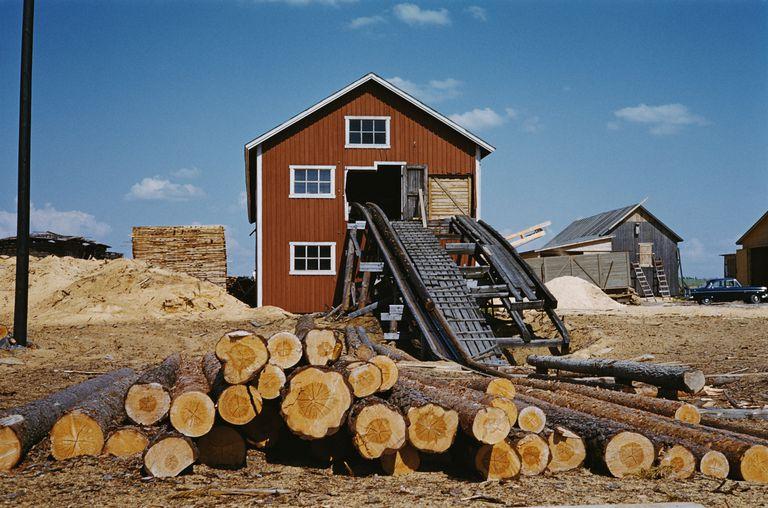 Finland Sawmill
