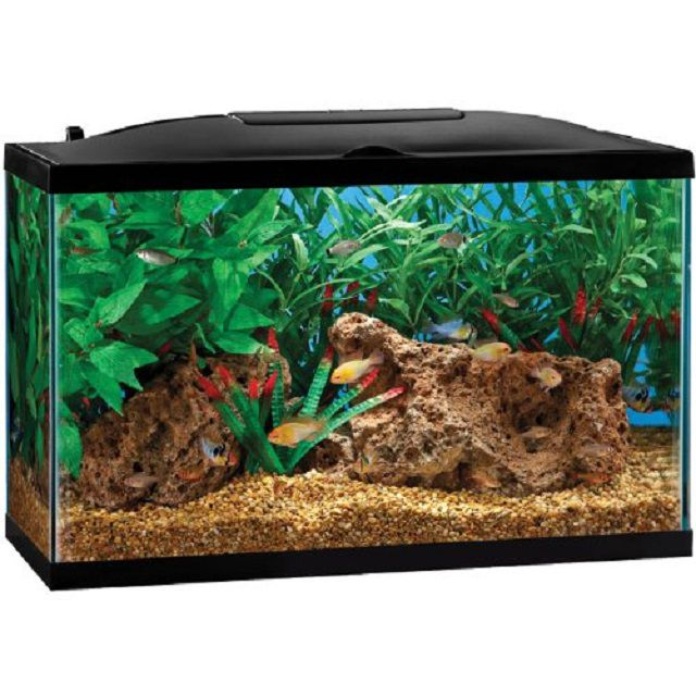 Marineland BIO-Wheel LED Aquarium Kit