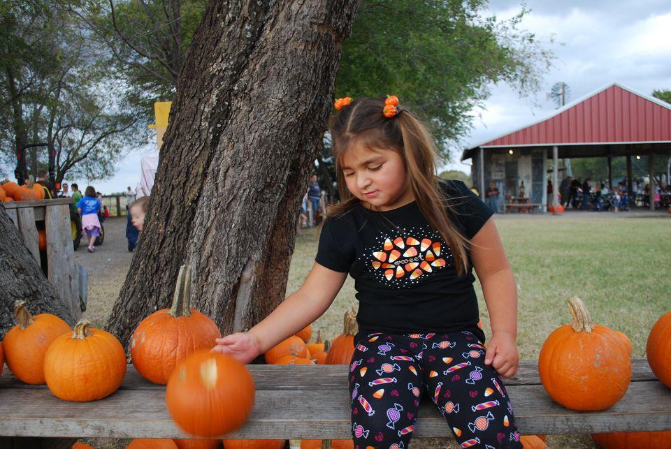 dfw pumpkin patches - Halloween In Fort Worth