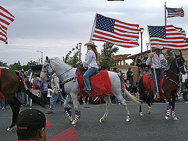 Patriotic Horse and Rider