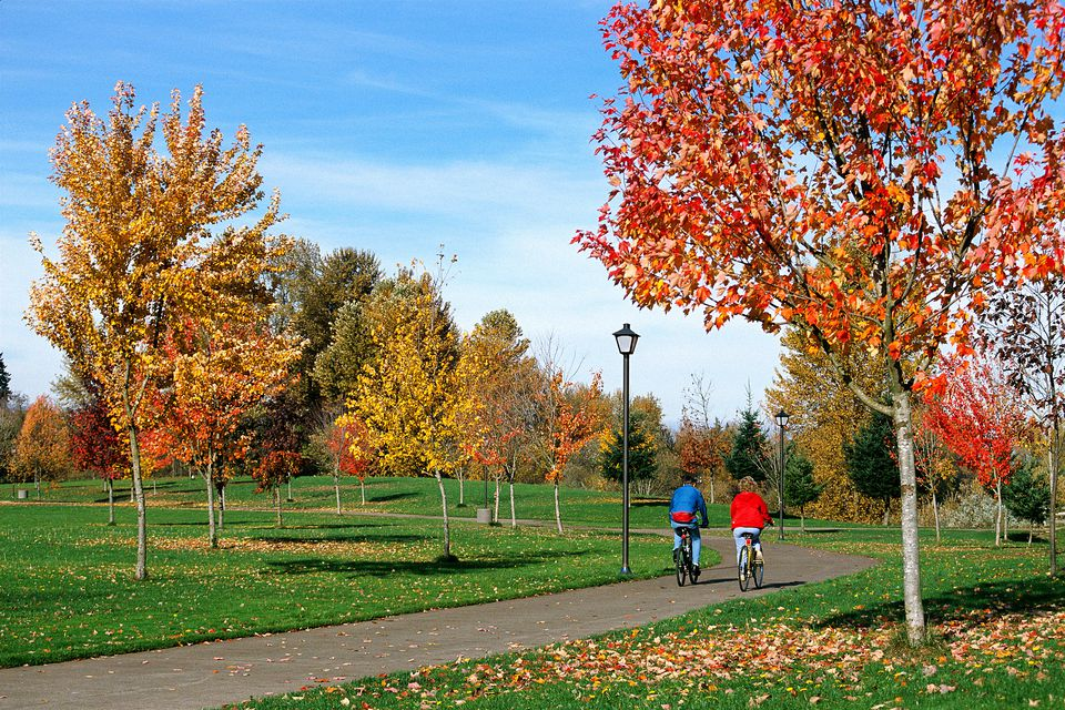Couple Biking in a Eugene OR Park
