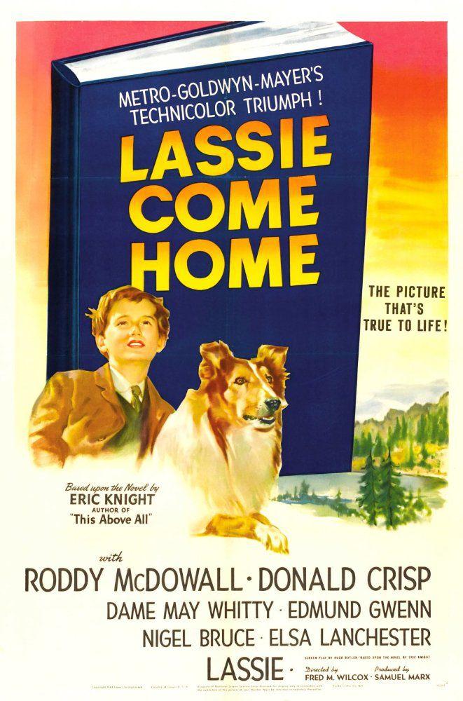lassie come home dog movie