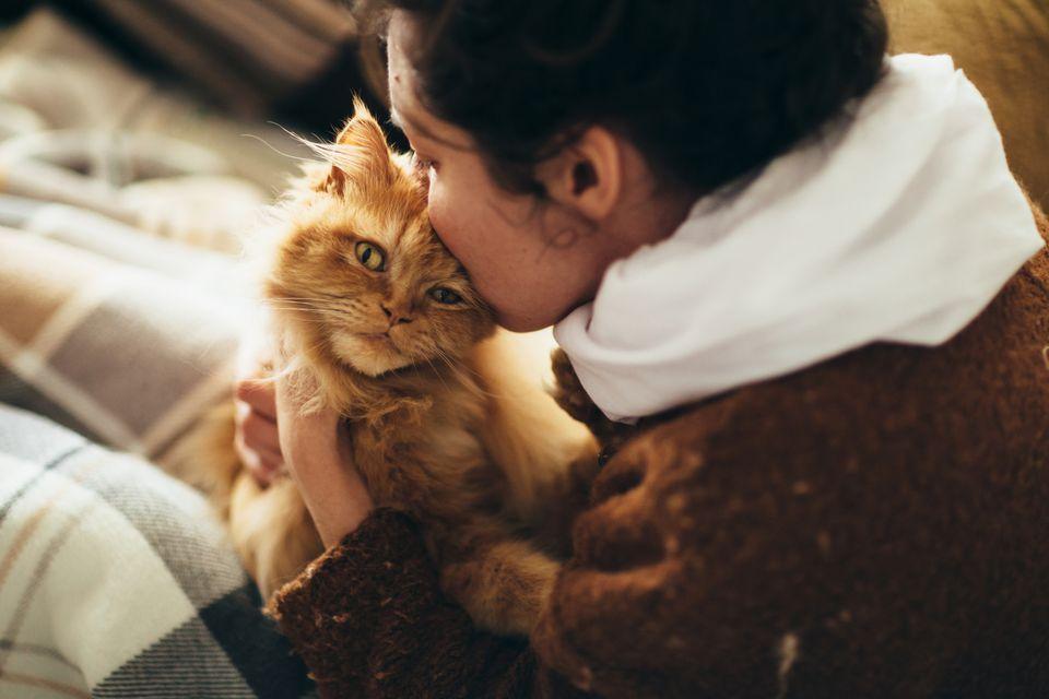 Woman kissing orange cat