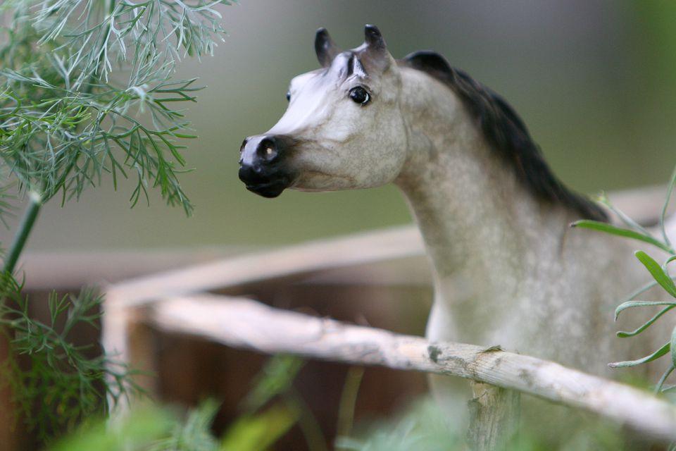 Beginner's project to customize a Breyer Family Arabian Stallion.