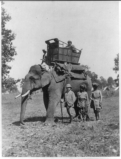british in colonial photo essay the prince of wales hunts from elephant back 1875 6